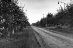 улица Калинина в районе первой школы (возможно)